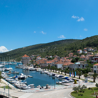 Marina and surroundings